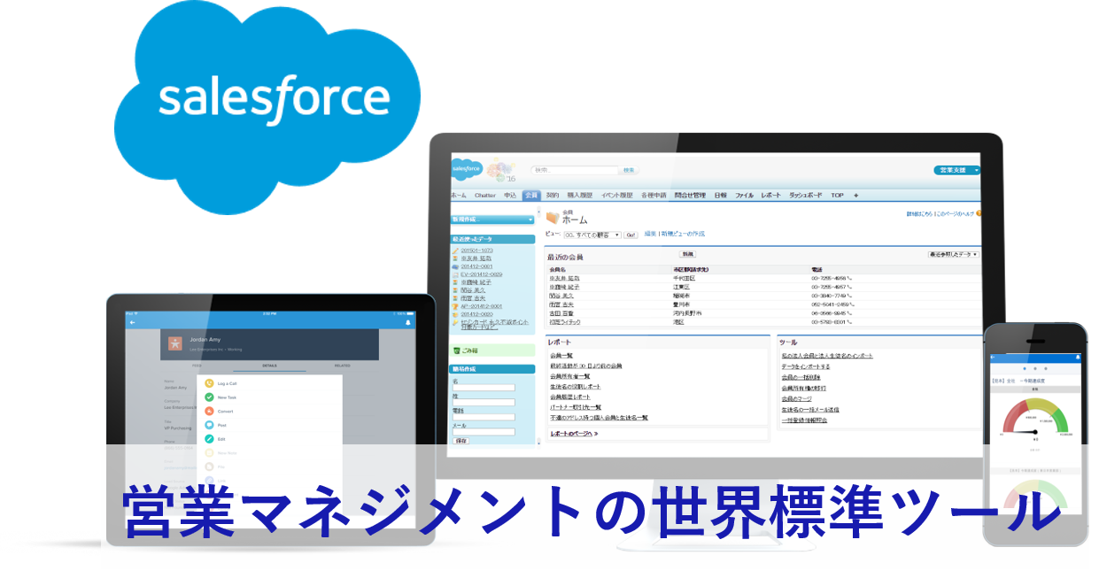 Salesforce導入支援サービスロゴ